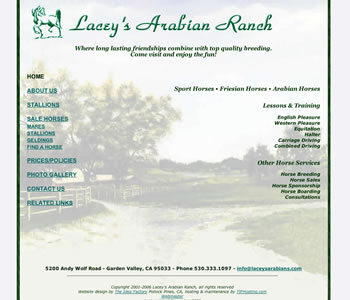 Lacey's Arabian Ranch website home page